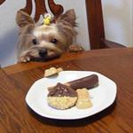 cookie02052005-06-14