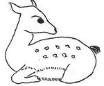 """2004.04.06""""鹿(色無し)"""""""
