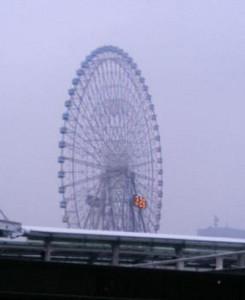 crowdeer2006-01-21