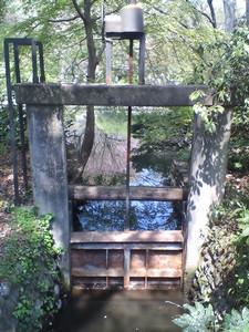 darienonikki2007-04-22