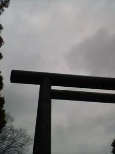 darienonikki2009-01-18