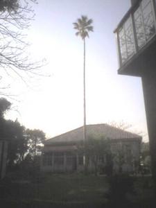 実習室前の古い建物