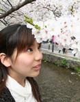 桜が満開でした♪