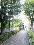 fu_ryu2013-07-26