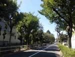 fu_ryu2013-09-28