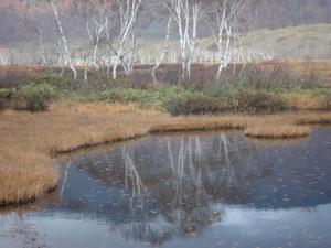 hatekota8102009-11-10