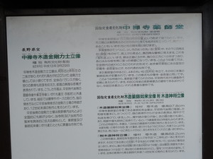 hatekota8102011-01-09