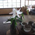 hekigyokuan2005-07-02