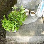 hekigyokuan2005-07-11