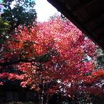 hekigyokuan2005-12-01