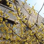 hekigyokuan2006-03-10