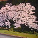 hekigyokuan2006-04-05
