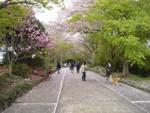 hekigyokuan2006-04-16