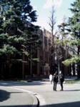 himekagura2005-01-31