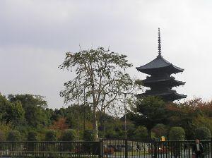 秋の東寺五重塔