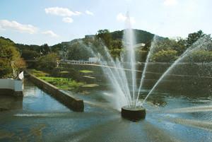 動物園の噴水