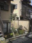 ikasamaya2006-01-25