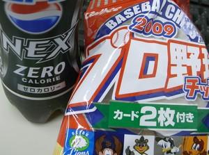 inaka2009-06-19