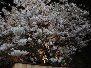 inaka2010-04-09
