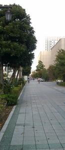 inaka2011-11-08