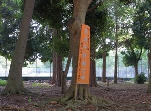 inaka2012-09-08