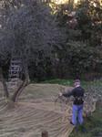 ischia2006-12-03