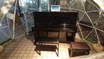 国立屋外ピアノ