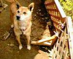 kankoto2005-05-15