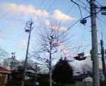 kankoto2007-02-03
