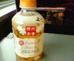 kankoto2009-11-29