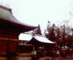 kankoto2010-01-02