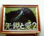 kankoto2010-04-22