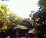 kankoto2010-05-16