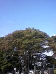 kankoto2010-10-14