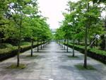 ke_takahashi2007-07-02