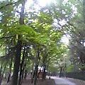 kei-zu2006-10-04