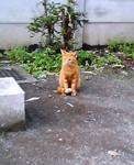 keiko232004-11-03