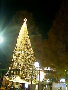 keiko232006-12-23