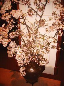 kon-kon2005-04-04