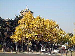 kon-kon2005-12-10