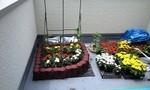 kowakenshi2009-05-26