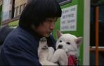 ムサン日記〜白い犬