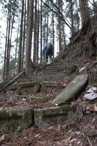 林道へ上がる