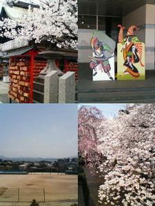 kusaboshi2006-04-06