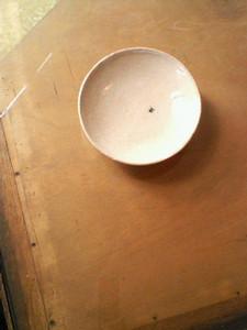 kusaboshi2006-06-10