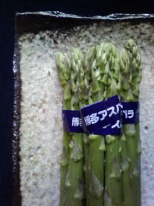 kusaboshi2007-03-06