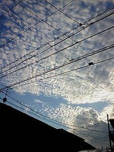 m-tamaki2007-10-01