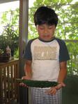 収穫されたニガタロウ2007