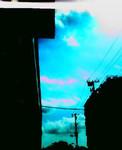 meltylove2005-09-27