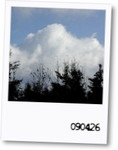 meltylove2009-04-26